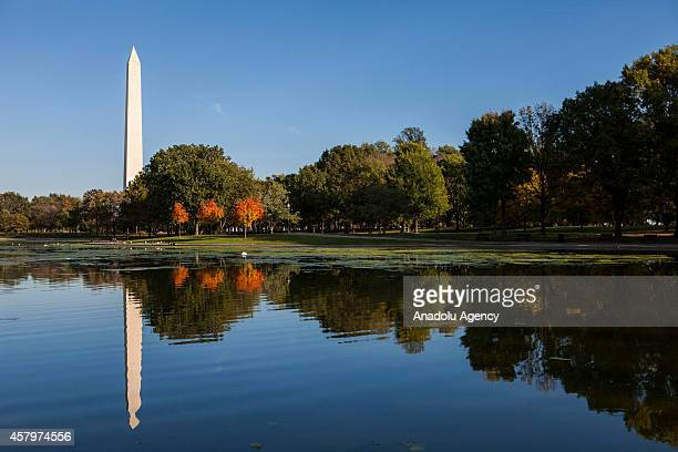The Washington Monument is seen from the Constitution Gardens Pond as autumn colours begin to show on October 27 2014 in Washington United States
