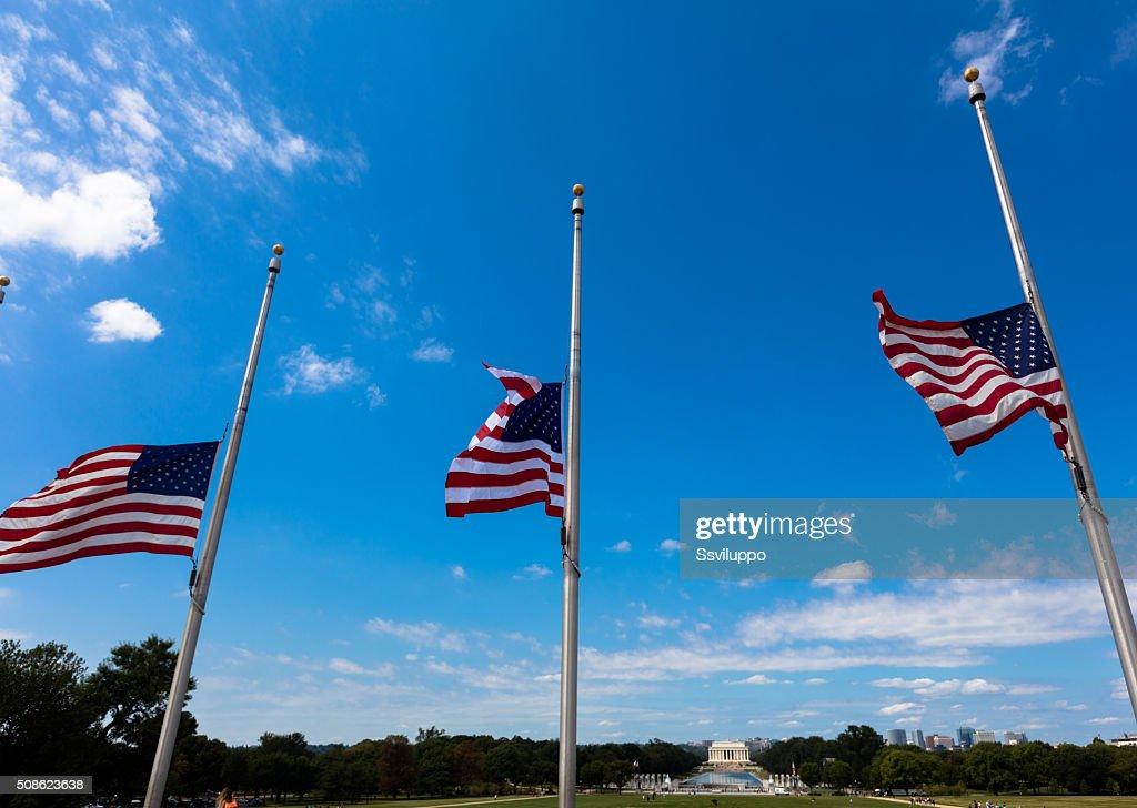the Washington monument : Stock Photo
