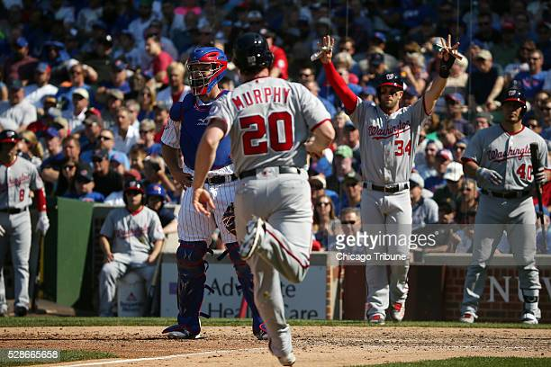 The Washington Nationals' Daniel Murphy scores a run as Chicago Cubs catcher David Ross stands by in the eighth inning at Wrigley Field in Chicago on...