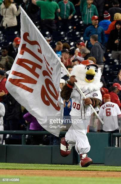 The Washington Nationals mascot celebrates after a victory against the Arizona Diamondbacks at Nationals Park on May 3 2017 in Washington DC