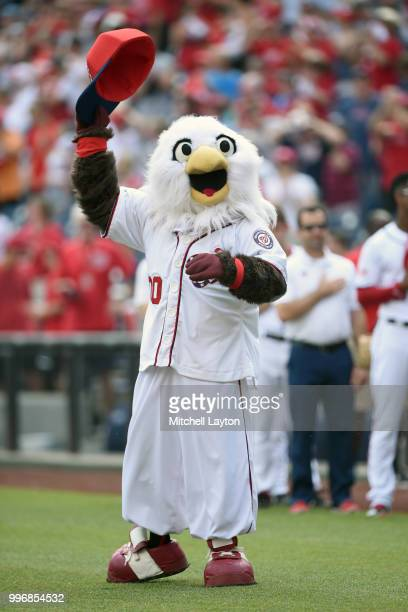 The Washington Nationals mascot Sreech on the field before a baseball game against the Boston Red Sox at Nationals Park on July 4 2018 in Washington...