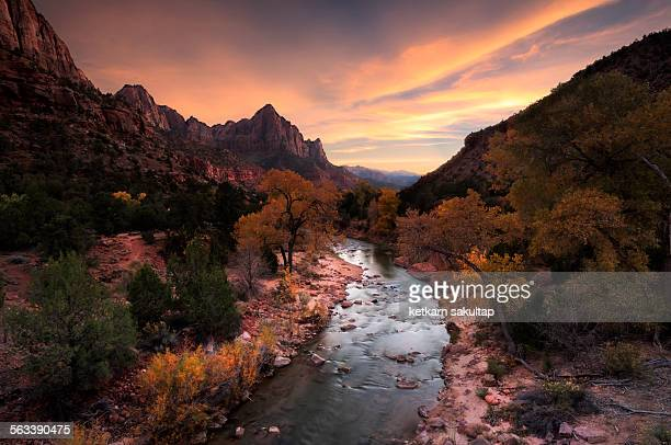 the watchman of zion national park - zion national park stock pictures, royalty-free photos & images