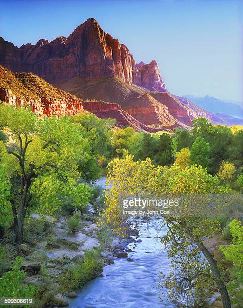 the watchman. - zion national park stock pictures, royalty-free photos & images