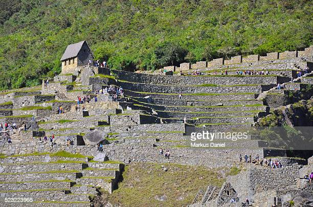 """the watchman's hut in machu picchu, peru - """"markus daniel"""" stock pictures, royalty-free photos & images"""
