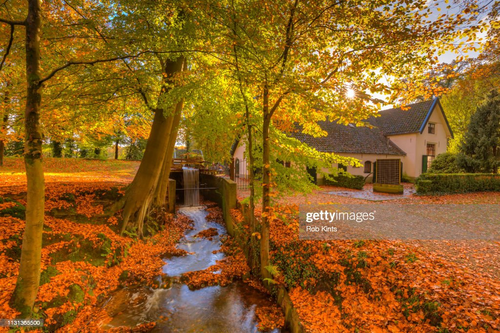 The Water Mill of Staverden and the Staverden Brook surrounded by beautiful Atumn Foliage of the Veluwe forest : Stock Photo