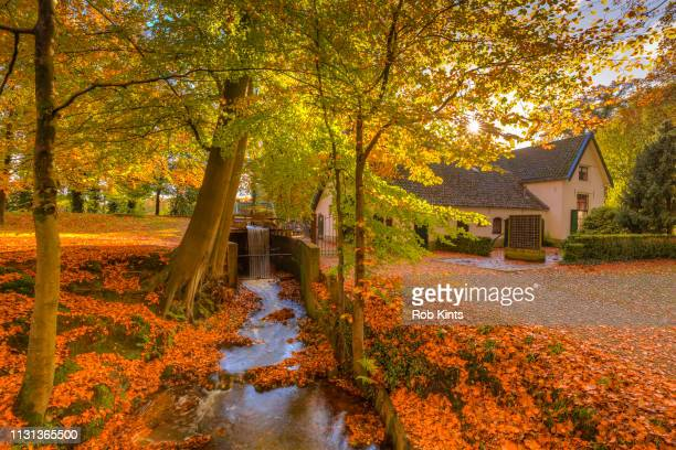 The Water Mill of Staverden and the Staverden Brook surrounded by beautiful Atumn Foliage of the Veluwe forest