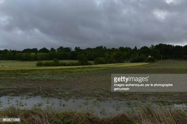 The water puddles in cultivated fields