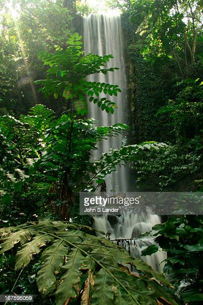 The waterfall at Jurong Birdpark is the largest man-made waterfall in the world. Similarly - with its collection of more than 9,000 birds from 600...