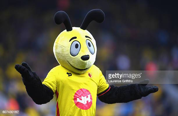 The Watford mascot gestures to the fans during the Premier League match between Watford and Manchester United at Vicarage Road on September 18 2016...