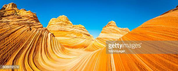 the wave iconic desert strata golden sandstone coyote buttes arizona - geology stock pictures, royalty-free photos & images
