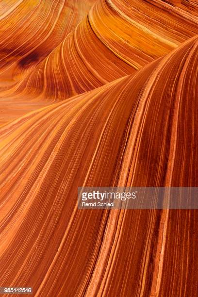 the wave - rock formation stock pictures, royalty-free photos & images