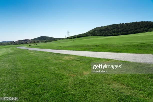 the way on the grassland - 砂利 ストックフォトと画像