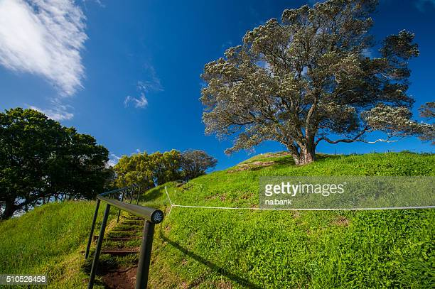The way to the top of Mount Eden