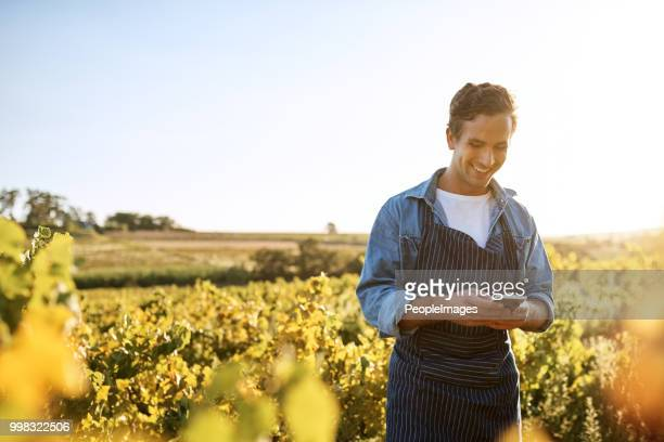 the weather forecast looks good for this week - rural scene stock pictures, royalty-free photos & images