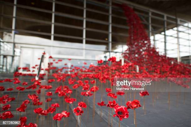 The Weeping Window installation which marks the centenary of World War One and was unveiled at the Senedd in Cardiff Bay on August 7 2017 in Cardiff...