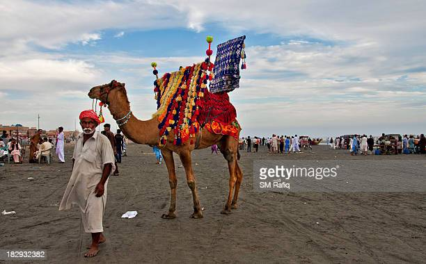 CONTENT] The well decorated animal is identity of Karachi beaches people used to ride on when the come to the beach against paying a little charge to...