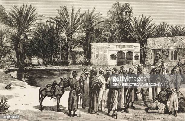 The Wells of Moses near Suez the starting point of the illfated expedition of Professor Edward Palmer Captain William Gill and Lieutenant Harold...