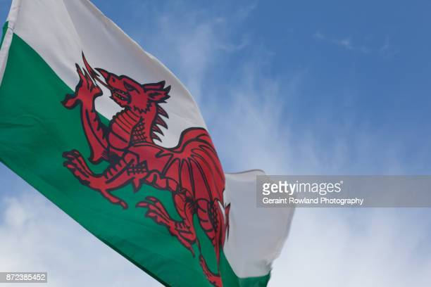 the welsh dragon - welsh flag stock pictures, royalty-free photos & images
