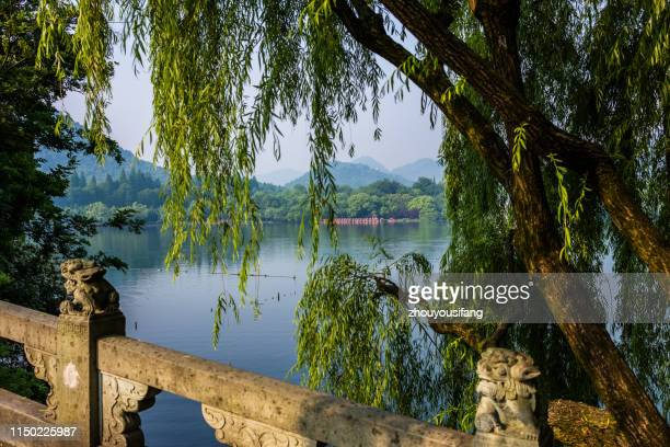 the west lake scenery of hangzhou - west lake hangzhou stock pictures, royalty-free photos & images