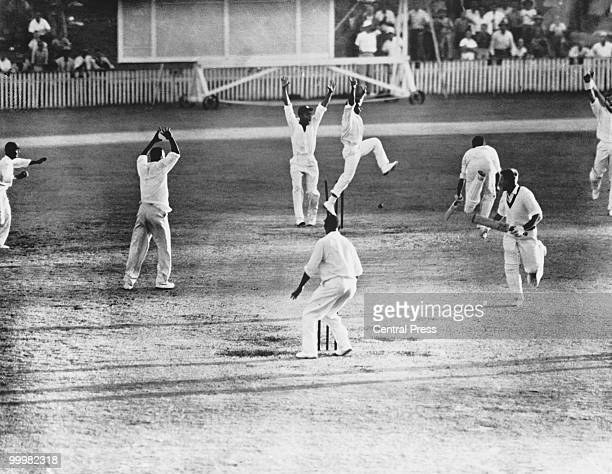 The WestIndian team celebrates as Australia's Ian Meckiff is run out with only two balls to go during the First Test at Brisbane Australia 19th...