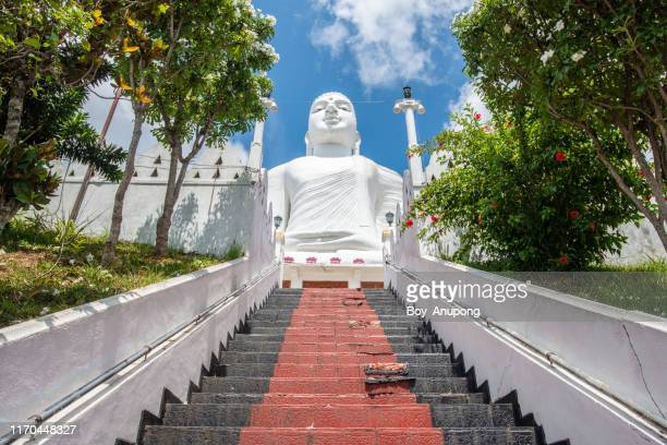 the white giant buddha statue in sri maha bodhi viharaya located on the top of small hill in kandy city, sri lanka. - kandy kandy district sri lanka stock pictures, royalty-free photos & images