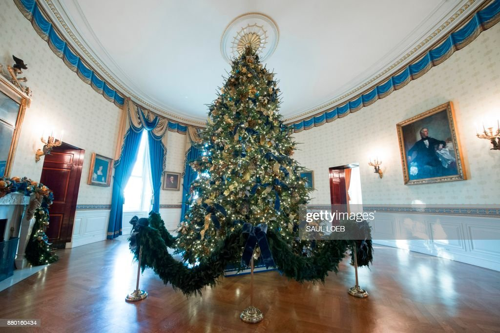 The White House Christmas Tree is seen in the Blue Room during a preview of holiday decorations at the White House in Washington, DC, November 27, 2017. /