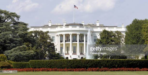 the white house in washington, dc - usa stock pictures, royalty-free photos & images