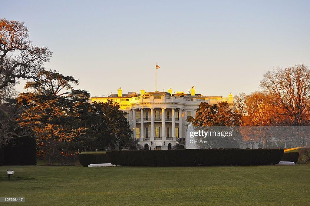 The White House : Stock Photo