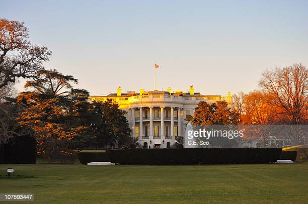 the white house - la maison blanche photos et images de collection