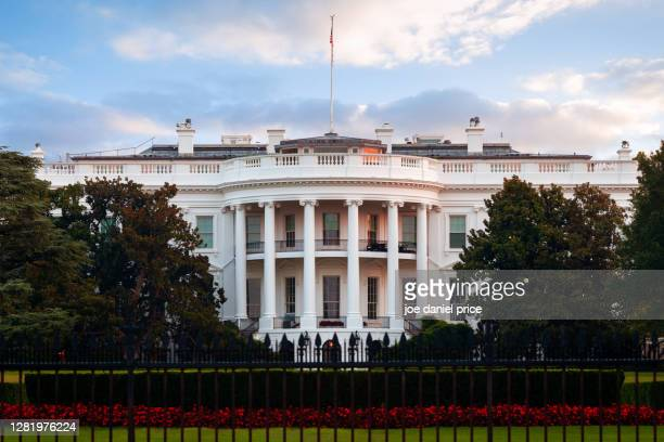 the white house south lawn, washington dc, america - white house exterior stock pictures, royalty-free photos & images