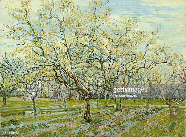 The white orchard 1888 Found in the collection of the Van Gogh Museum Amsterdam