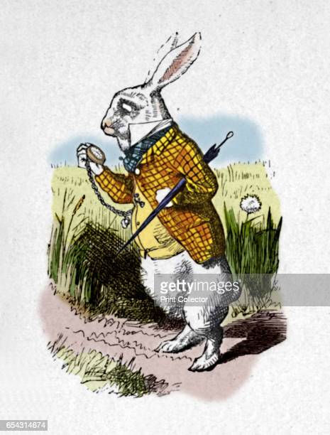 The White Rabbit with a watch 1889 Lewis Carrolls Alice in Wonderland as illustrated by John Tenniel From Alices Adventures in Wonderland by Lewis...