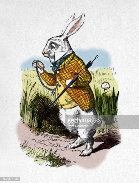 The White Rabbit with a watch' 1889 Lewis Carroll's 'Alice in Wonderland' as illustrated by John Tenniel From Alice's Adventures in Wonderland by...