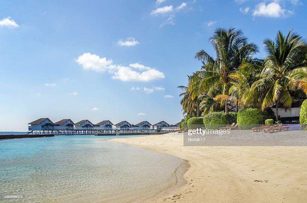 The white sandy beach, Maldives : Stock Photo