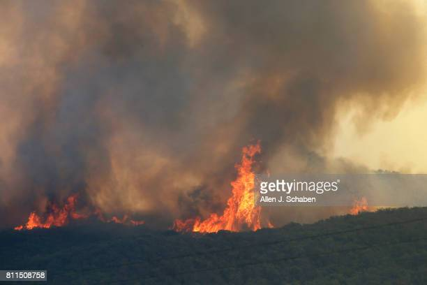 The Whittier Fire burn towards SR154 in the Los Padres National Forest near Lake Cachuma Santa Barbara County Sunday July 9 2017 At least 200 people...