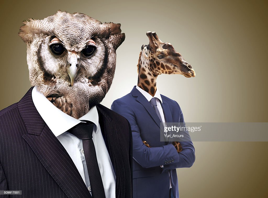The whoo's whoo in business : Stock Photo