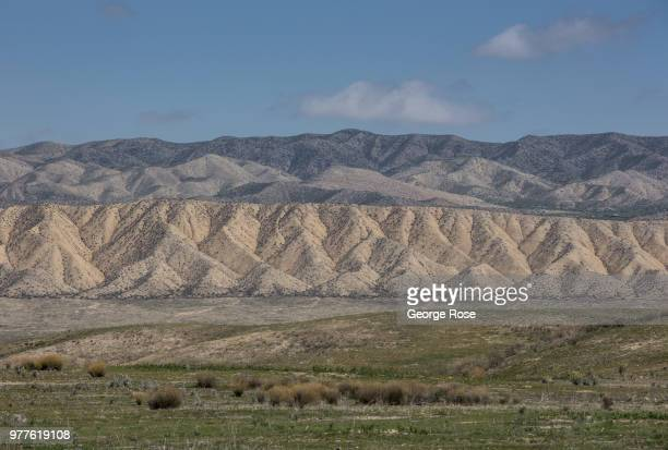 The wide open expanses of the Carrizo Plain are viewed on April 12 in Carrizo Plain National Monument California Located in the southeastern corner...