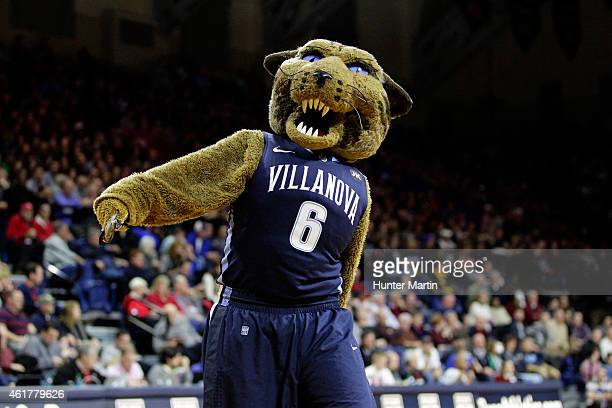 The wildcat mascot of the Villanova Wildcats walks on the court during a game against the Penn Quakers at the Palestra on the campus of the...