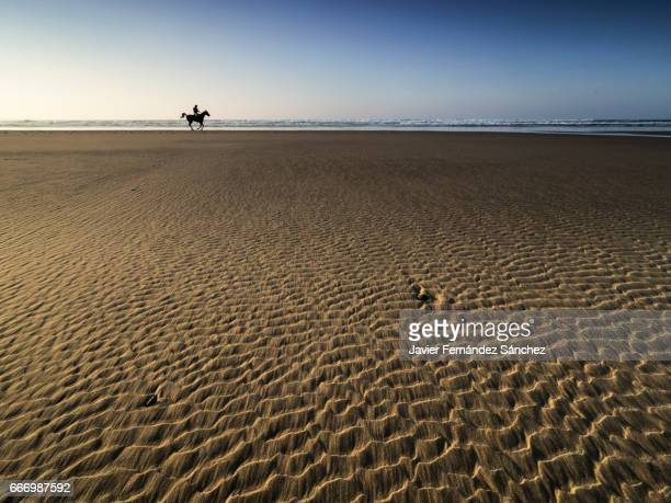 The wind and the water have created a beautiful texture in the sand of the beach, and in the background appears the figure of a rider and his horse.