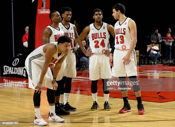 The Windy City Bulls players stand on the court during the game against the Sioux Falls Skyforce on March 04 2017 at the Sears Centre Arena in...