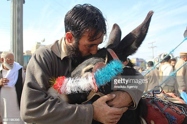 The winner kisses their donkey during the donkey cart race is the traditional sports of Gujar Khan and every year such events held in the area and...