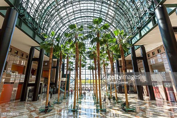 the winter garden atrium, new york city - world financial center new york city stock pictures, royalty-free photos & images