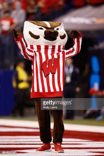 The Wisconsin Badgers mascot Bucky Badger cheers against the Ohio State Buckeyes during the Big Ten Championship game at Lucas Oil Stadium on...