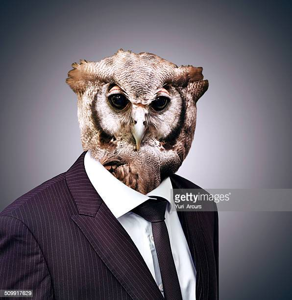 The wise owl knows what's best for business