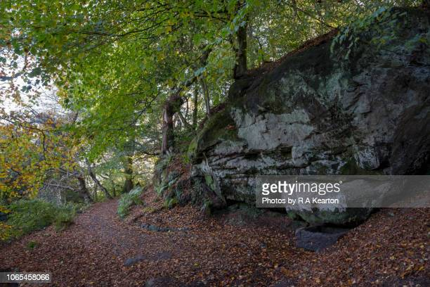 The Wizards Well, Alderley Edge, CHeshire, England