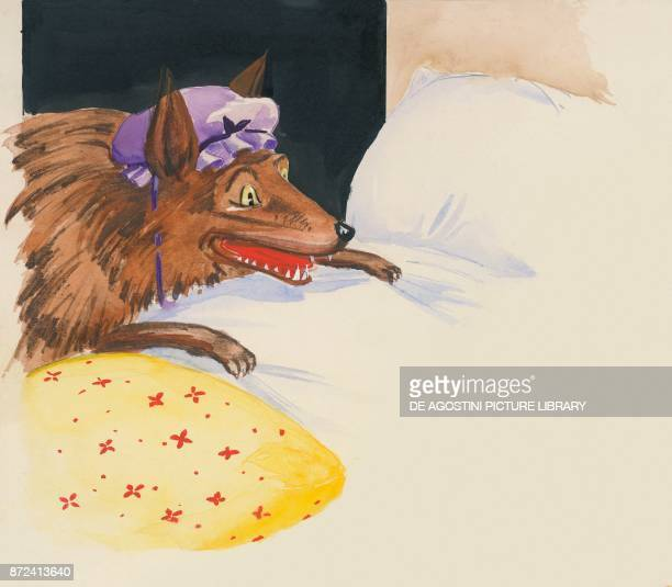 The wolf disguised as the grandmother illustration for the European fairy tale Little Red Riding Hood drawing