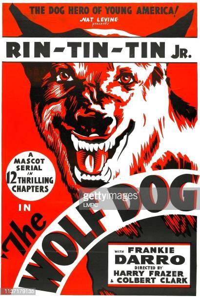 The Wolf Dog poster Rin Tin Tin Jr 1933