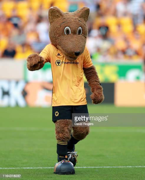 The Wolves mascot during the UEFA Europa League Second Qualifying round 1st Leg match between Wolverhampton Wanderers and Crusaders at Molineux on...