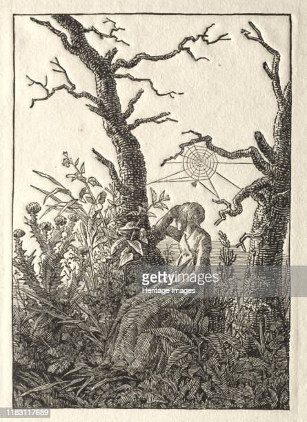 The Woman with the Spider Web between Bare Trees, 1803. For Friedrich, landscape was the expression of spirituality and a personal connection with...