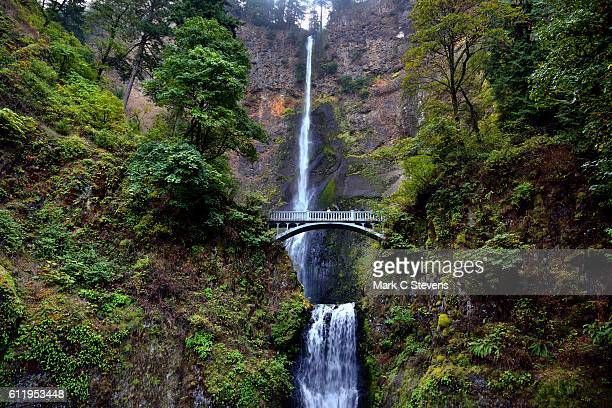 the wonderful beauty of multnomah falls - columbia river gorge stock pictures, royalty-free photos & images